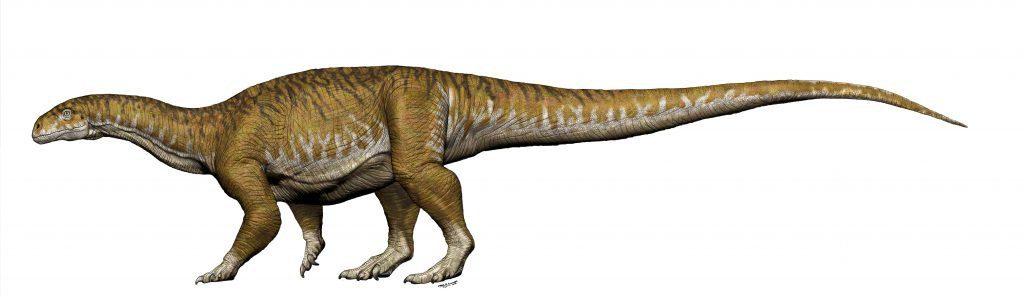 Ingnentia prima dinosaur