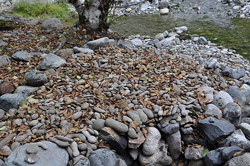 Heaping pile of concretions
