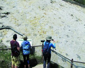 Onlookers at dino track site