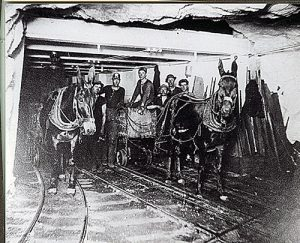 Bisbee miners