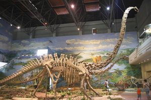 Mamenchisaurus youngi