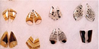 Matched pairs of earring cabochons