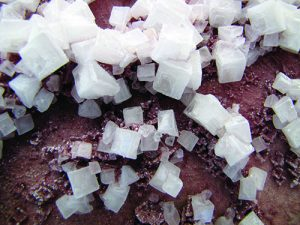 Halite sample
