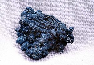 Bornite coated chalcoyrite-Bristol