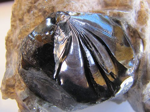 Obsessed With Obsidian A Mineraloid An Edge