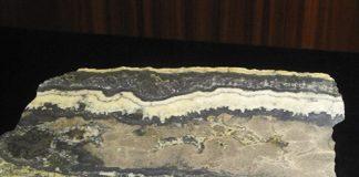 Slabbed ore specimen