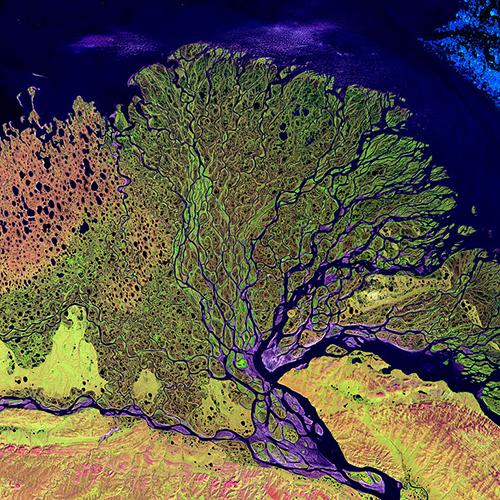 Landsat Lena River image