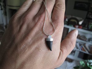 Fossilized barracuda tooth necklace