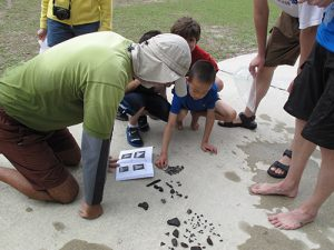 On-site fossil identification