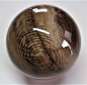 Custom-made sycamore wood fossil sphere