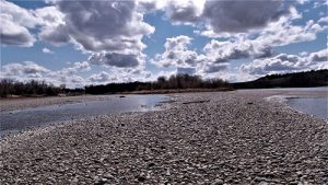 Yellowstone River gravel bar