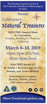 2019 CFMS Annual Show & Convention