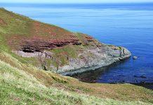 Siccar Point_Devonian Period