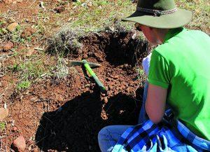 Shallow digging