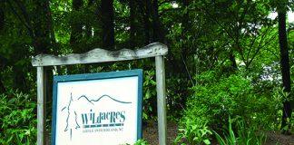 Wildacres