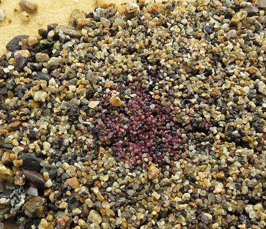 Screen of garnet-bearing pay dirt