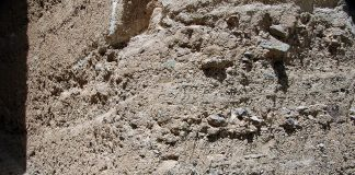 Miocene sediment